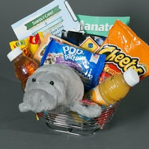 Kids Fun  And Goodies  Basket