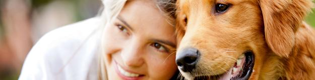 Rosen Plaza® Pet Friendly Banner