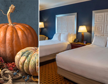 Thanksgiving Day Stay Package Offer