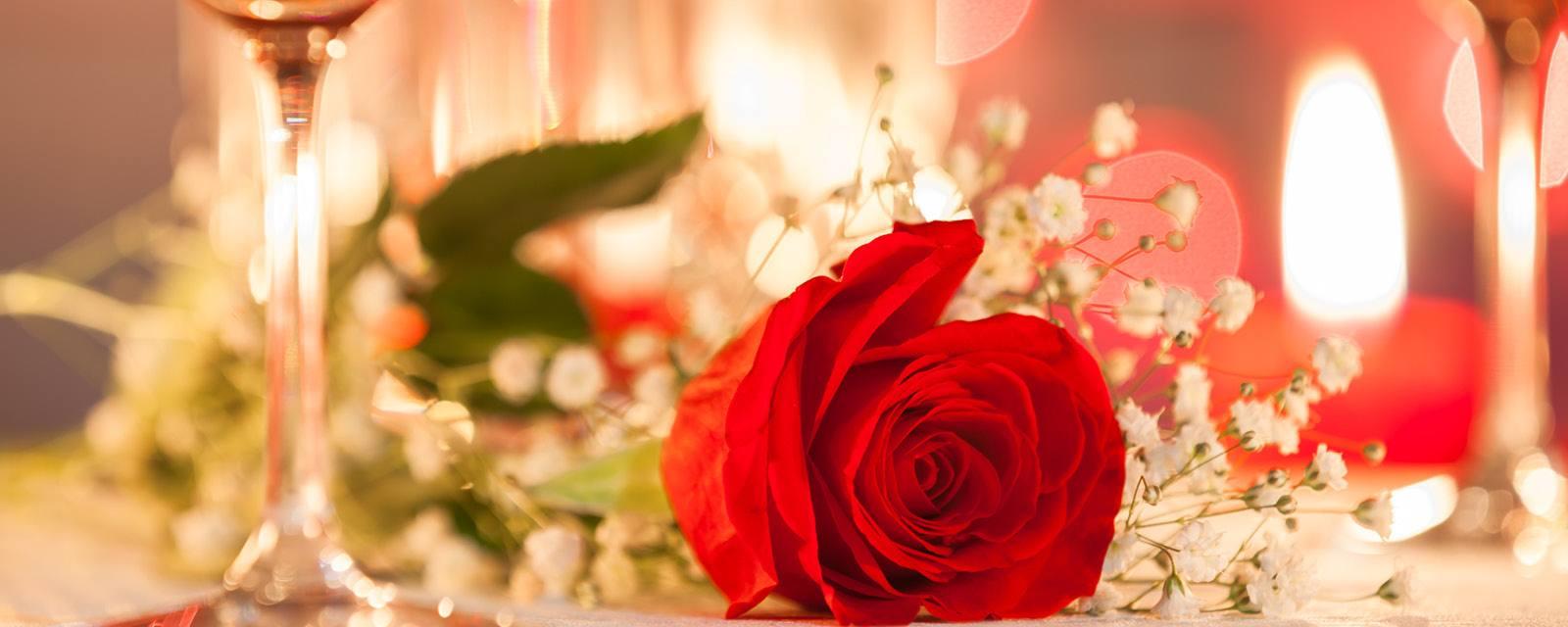 Rosen Plaza Hotel Valentine's Day In International Drive