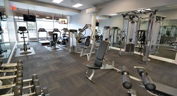 Gym equipment - Treadmill, weights, benches